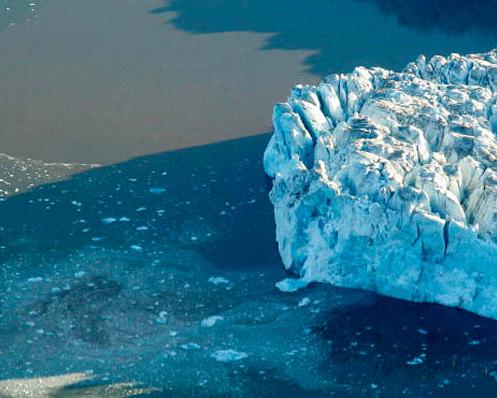 Antartide: studio ecosistema